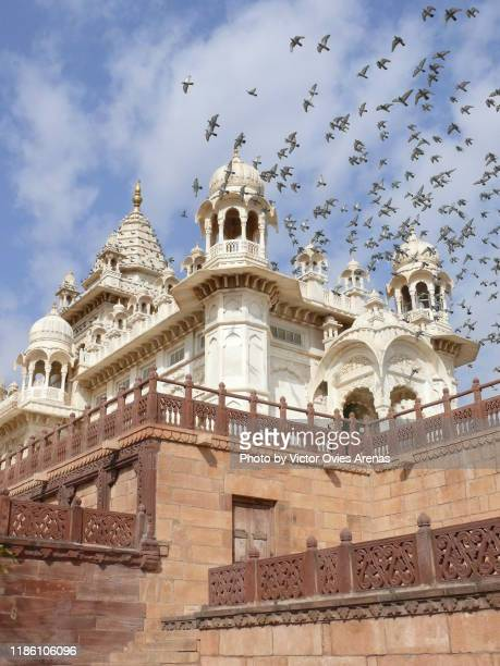 flock of birds flying over the jaswant thada cenotaph complex in jodhpur, rajasthan, india - the cenotaph stock pictures, royalty-free photos & images
