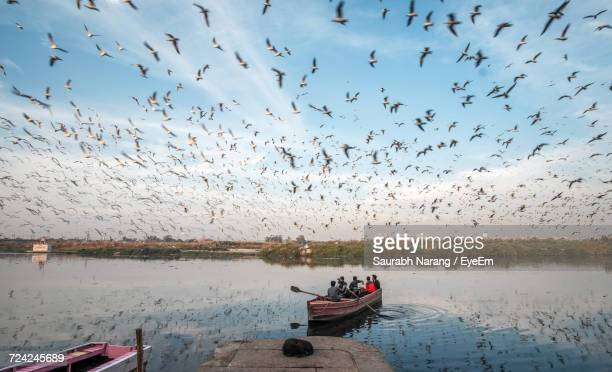 Flock Of Birds Over River Against Sky
