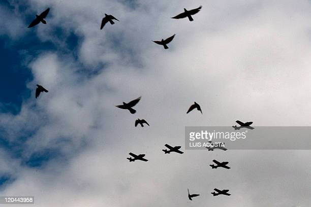 A flock of doves passes before the lens of the camera as an Air Force wing of Brazilianmade EMB 314 Super Tucano military light attack counter...