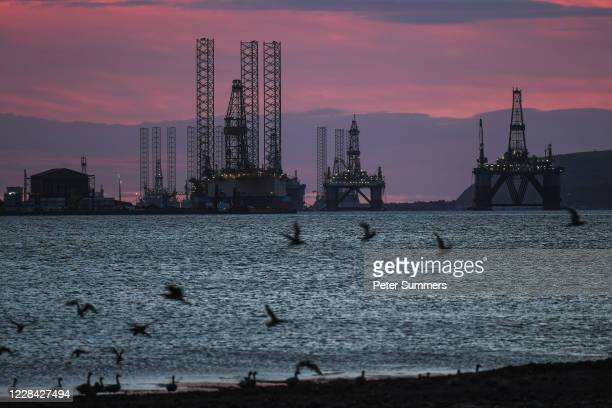 A flock of geese take off in the foreground of oil rigs and drilling platforms at sunrise on September 9 2020 in Cromarty Scotland Complaints from...