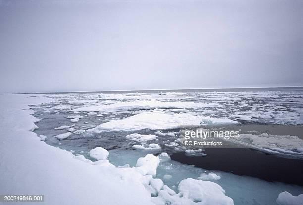 floe edge, baffin island, canada - バフィン島 ストックフォトと画像