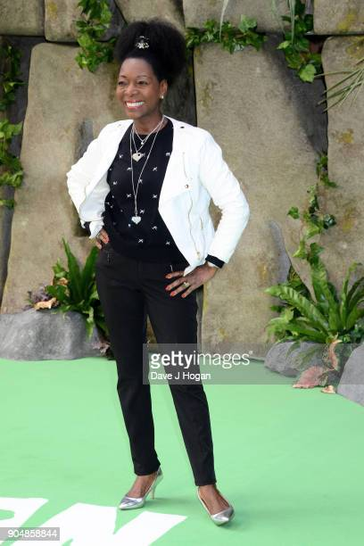 Floella Benjamin attends the 'Early Man' World Premiere held at BFI IMAX on January 14 2018 in London England