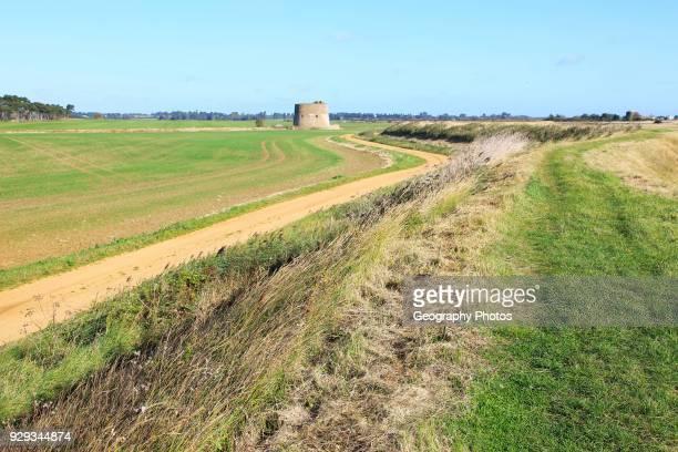 Flood defense sea wall dyke view north to Shingle Street Alderton Suffolk England UK