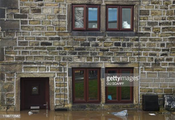 TOPSHOT Flood water laps at the door of a house as a cat looks from an upperfloor window in Mytholmroyd northern England on February 9 after the...