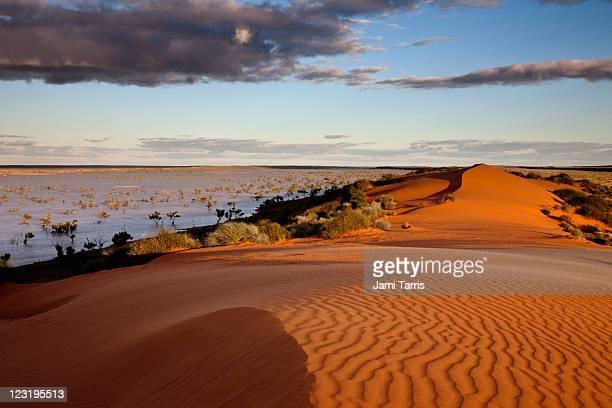 Flood waters between desert dunes