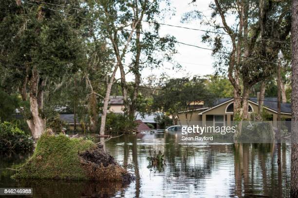 Flood waters from the Black Creek inundate a neighborhood after Hurricane Irma September 12 2017 in Middleburg Florida United States The storm...