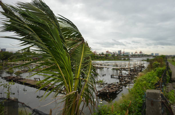 A flooded area near Baseco Compound in Manila The Batangas Shipping and Engineering Company Compound is the largest among five communities composing...