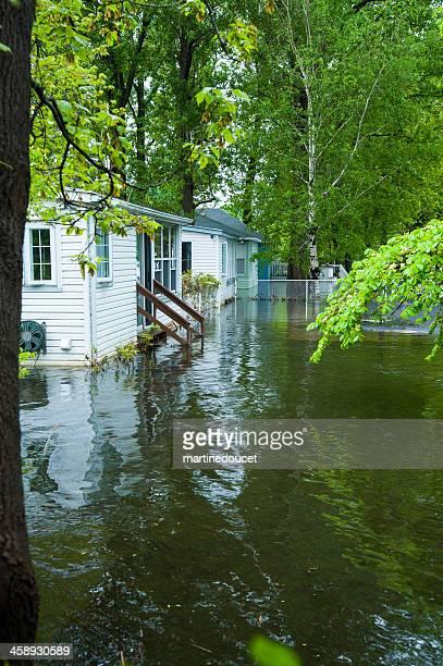 Flooded backyard of residential houses.