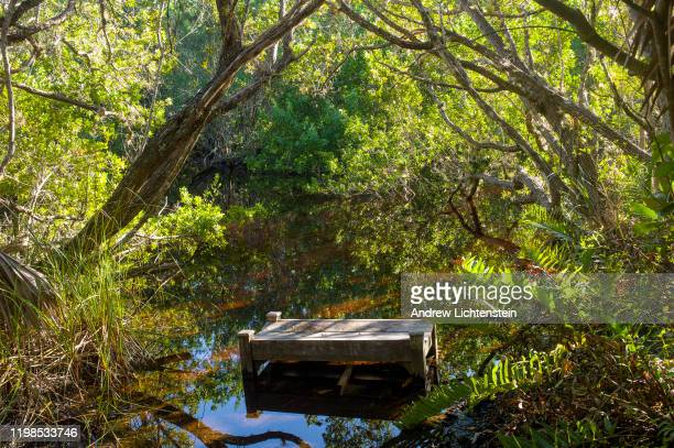 Flooded bench sits on the Sanibel River on JANUARY 07, 2020 on Sanibel Island, Florida. The river on the barrier island is actually a canal dug to...