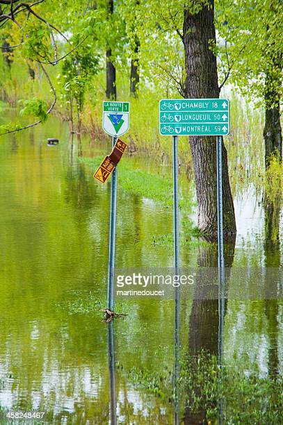 "flooded bicycle path. - ""martine doucet"" or martinedoucet stockfoto's en -beelden"