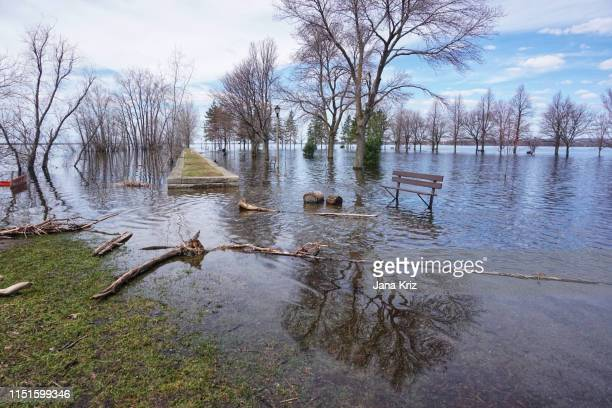 flooded britannia bay on the ottawa river in the spring, benches in water - extreme weather stock pictures, royalty-free photos & images