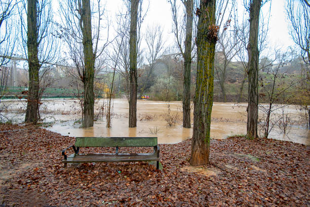 flooded landscape after a season of torrential rains