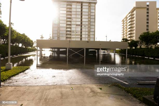 flooded parking lot - miami dade county stock photos and pictures