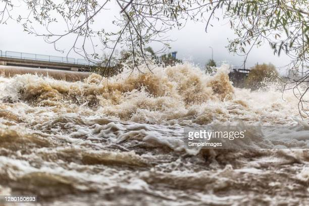 flooded river during persistent heavy rain. - tsunami stock pictures, royalty-free photos & images