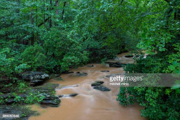 flooded river - brook mitchell stock pictures, royalty-free photos & images