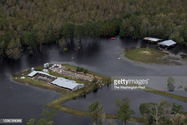 Flooding and wind damage from Hurricane Florence is seen on farmland near Half Moon, NC on September 17, 2018.