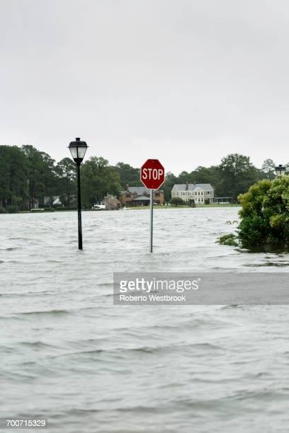 Flooding around stop sign and streetlamp