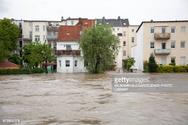 flooding, gera, germany, 2016 - pioggia forte foto e immagini stock