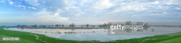Overstromingen in het overloopgebied van de rivier de IJssel in Nederland breed panorama