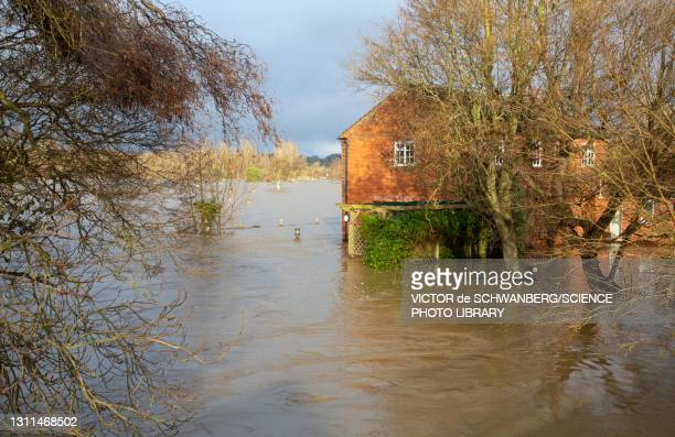 flooding - house stock pictures, royalty-free photos & images