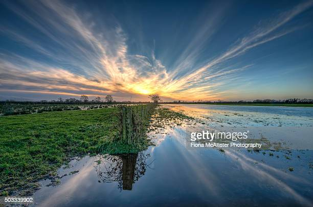 floodland sunset - flood stock pictures, royalty-free photos & images