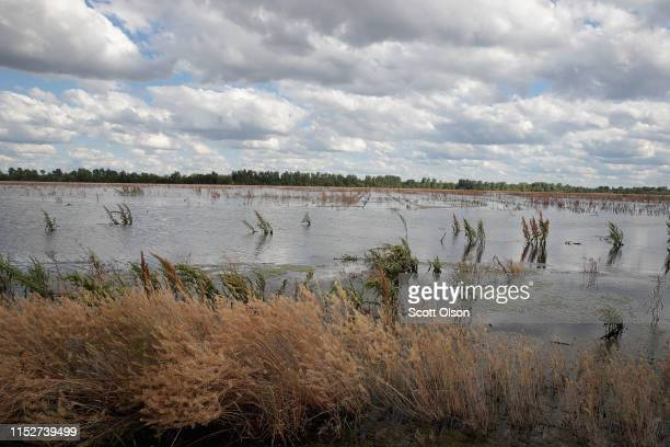 Floodwater from the Mississippi River covers a farmer's field on May 30 2019 in Ste Genevieve Missouri The middlesection of the country has been...