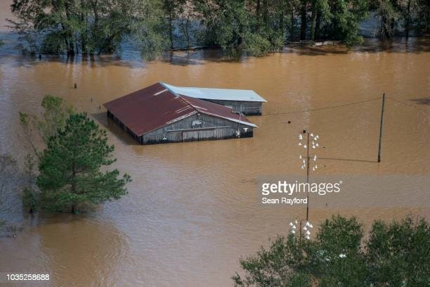Floodwaters inundate a barn after Hurricane Florence struck the Carolinas Monday, Sept. 17 near Wallace, South Carolina. Many rivers in the Carolinas...