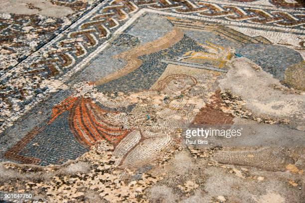 Floor mosaic, Roman archeological site in Volubilis, Morocco