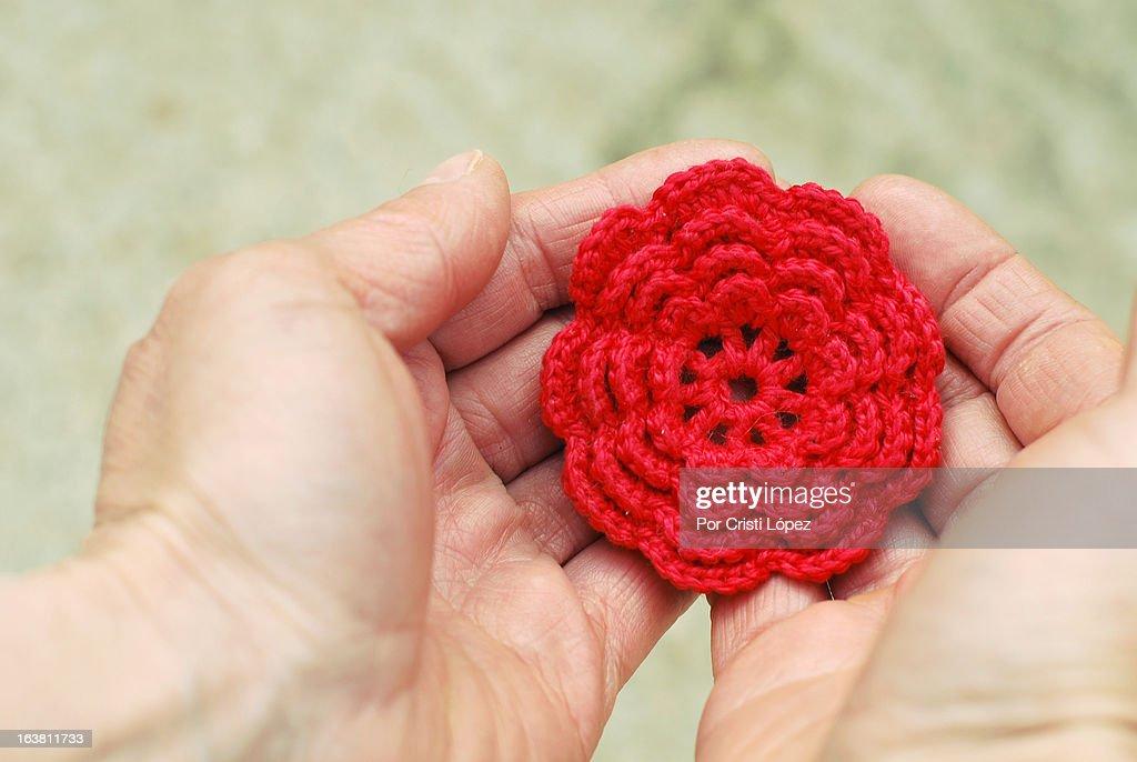 Flor de ganchillo : Stock Photo