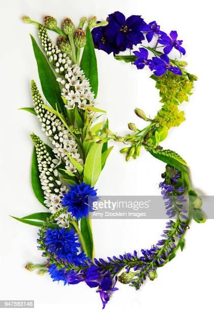 floral alphabet letter b - nature alphabet letters stock pictures, royalty-free photos & images