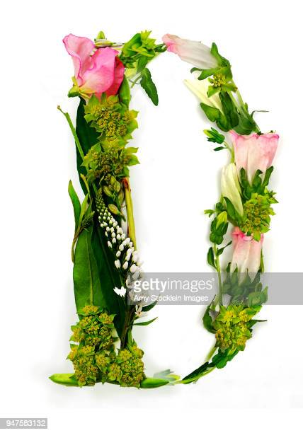 floral alphabet letter d - the alphabet stock pictures, royalty-free photos & images
