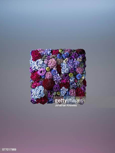 Floral arrangement, square shape