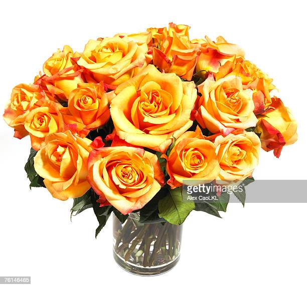 Floral bouquet of yellow roses against white background
