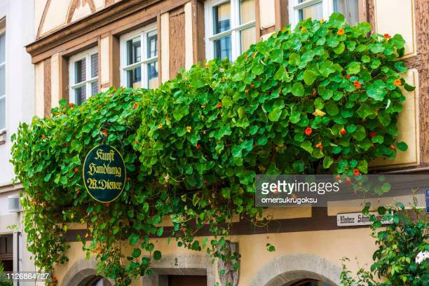 Floral detail on the balcony in Rothenburg Ob Der Tauber, Germany