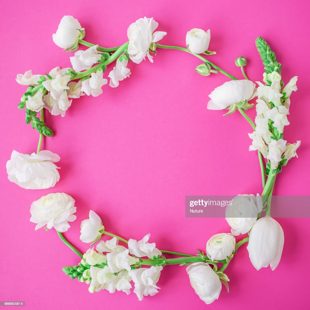 Floral Frame Made Of White Flowers And Buds On Pink Background Flat