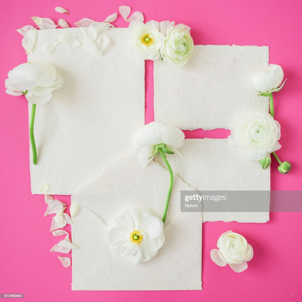 Floral Frame Of White Flowers And Paper Calligraphy Cards And