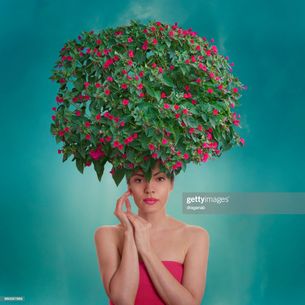 Floral hairstyle : Stock Photo