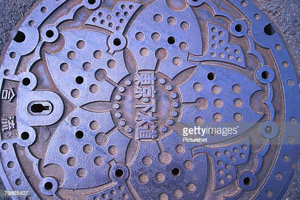 Floral Motif on a Manhole Cover