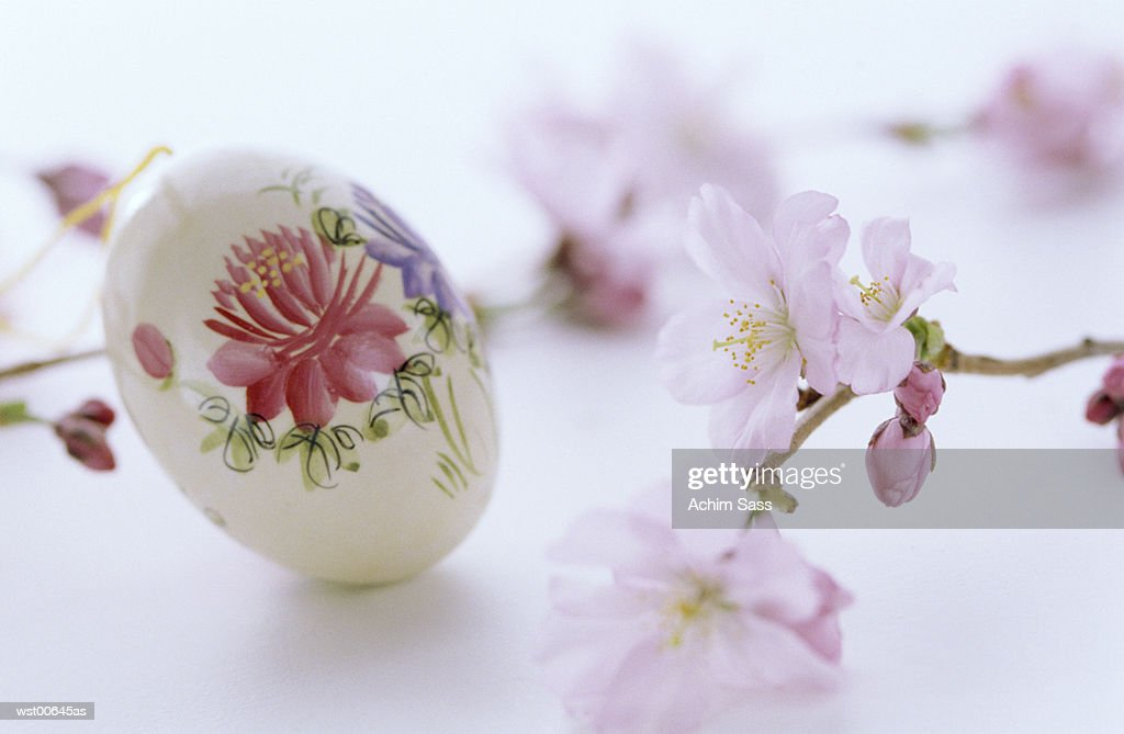 Floral painting on egg, Easter tradition, close up : Stock Photo