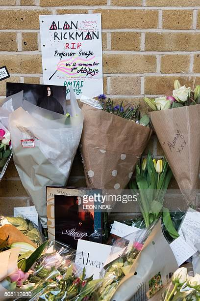 Floral tributes to British actor Alan Rickman are seen at the Platform 9 3/4 Harry Potter display at King's Cross station in London on January 15...