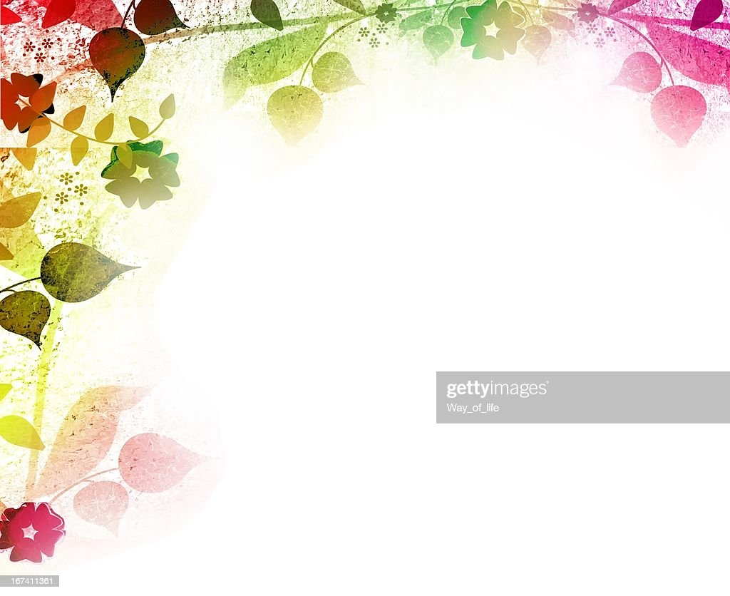 Floral vintage leaves and flowers backgrounds : Stock Photo
