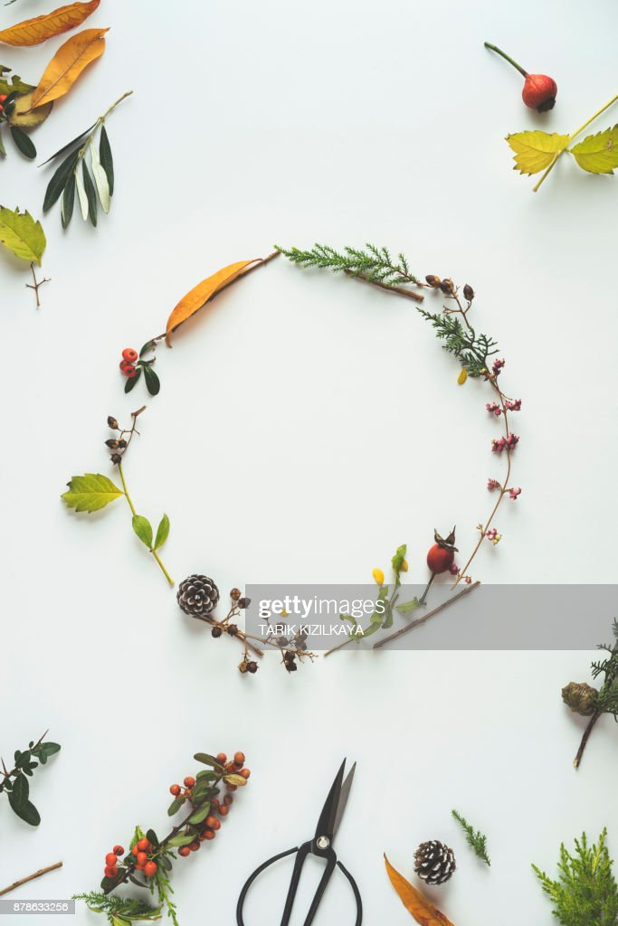 Floral winter wreath : Stock Photo