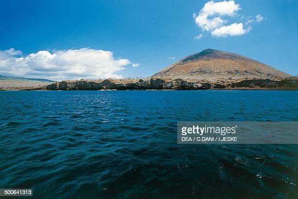 Floreana Island Galapagos Islands Ecuador