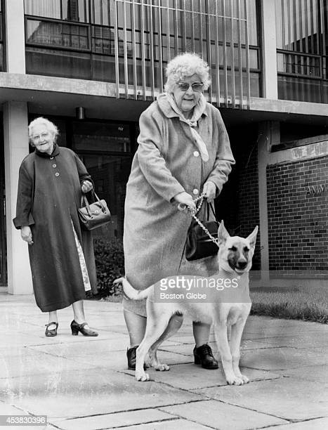 Florence Nyles watches her companion Mary Coltin take her new shepherd Duke home to serve as a watchdog as fear drives women to protect themselves...