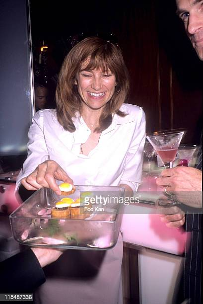 Florence Pernel during Cointreaupolitan's 60th Cannes Festival 2007 Before Party at Appartement 396 Rue St Honore in Paris France