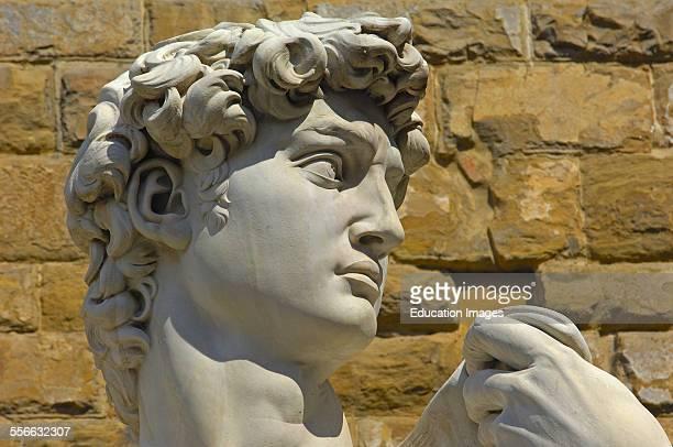 Florence, Statue of David by Michelangelo, La Signoria square, Piazza Della Signoria, Tuscany, Italy.