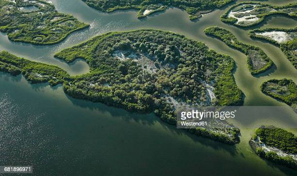 USA, Florida, Aerial photograph of mangroves and sandbars along the western coastline of Tampa Bay