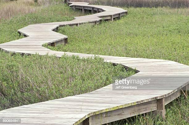 Florida Amelia Island Plantation Raised Nature Trail Through Tidal Marshlands
