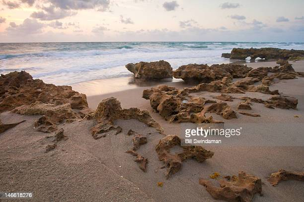 florida beach at sunrise with foreground rocks - jupiter island florida stock photos and pictures