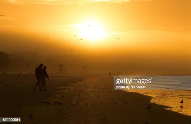 florida beach sunrise - sarasota stock pictures, royalty-free photos & images